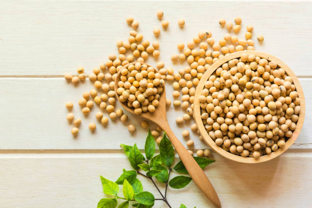 Indian Soybeans