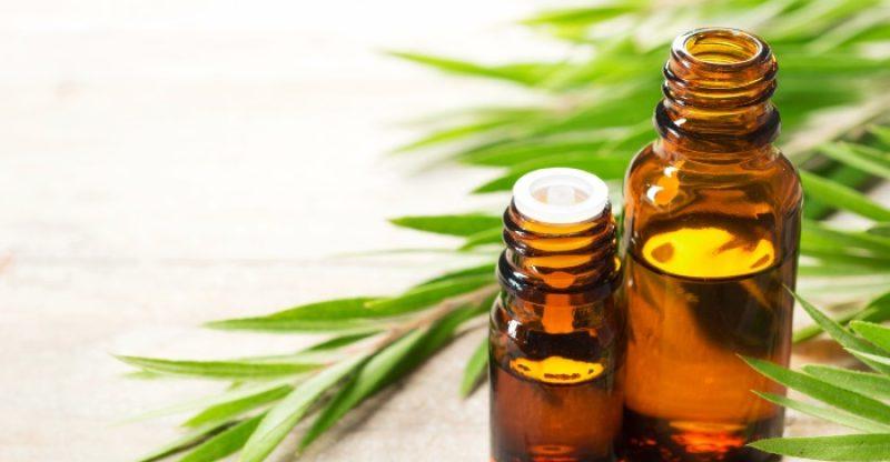 Organic Vetiver Oil