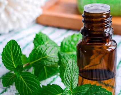 Pure Menthol Mint Oil