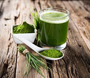 Wheatgrass Juice
