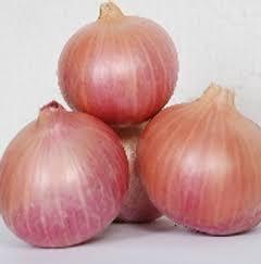 Fresh Yellow Onion