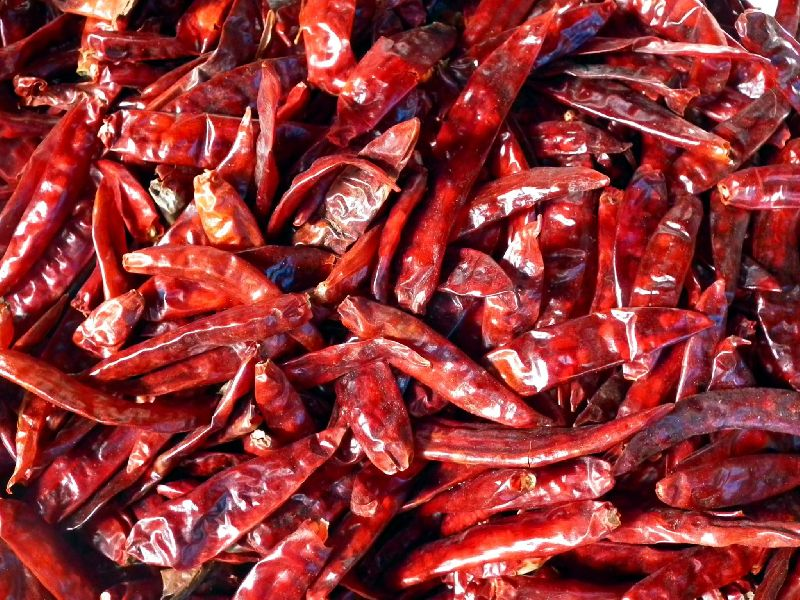 Dry Red Chili Pods