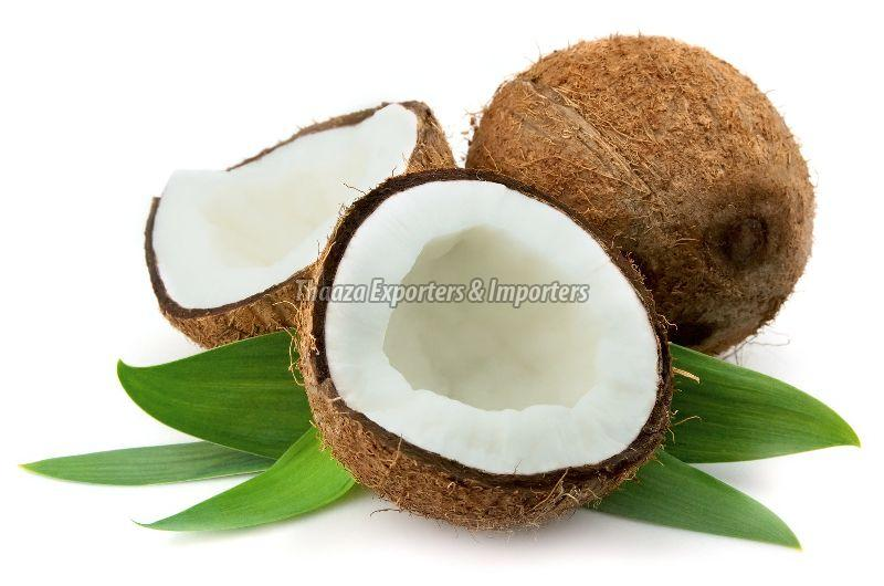Fresh Husked Mature Coconut