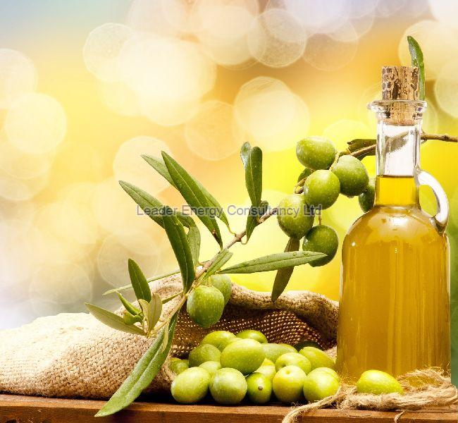 Turkish Olive Oil