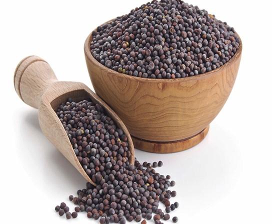 Rai Seeds