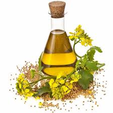Terpeneless Dill Seed Oil