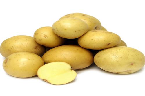 Pukhraj Potato