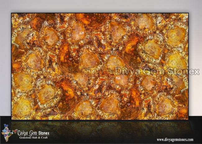 Brown Petrified Wood Slab
