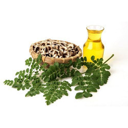 Cleaned Genuine Moringa Oil Seeds