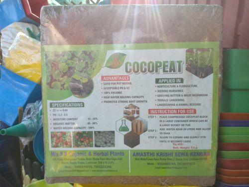 Coco Peat 01