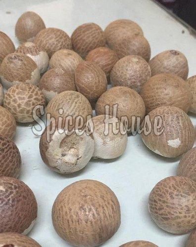 Dried Betel Nuts