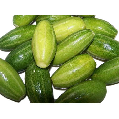 Natural Pointed Gourd