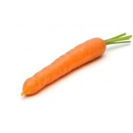 Fresh Orange Carrot