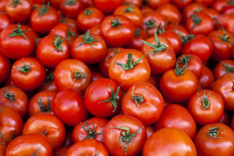 Fresh Solanum Lycopersicum