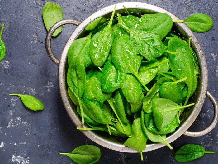 Fresh Spinacia Oleracea