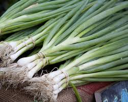 Green Onion leaves