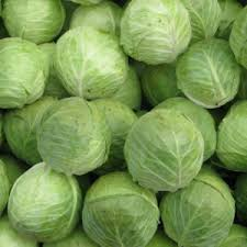 Fresh Natural Cabbage
