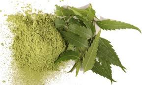 Dried Neem Leaves Powder