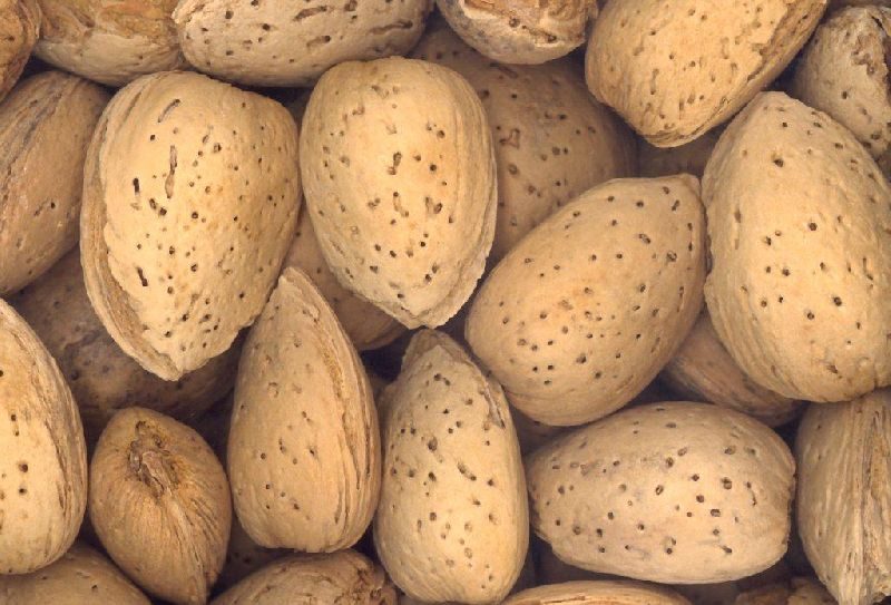 Hard Shelled Almonds
