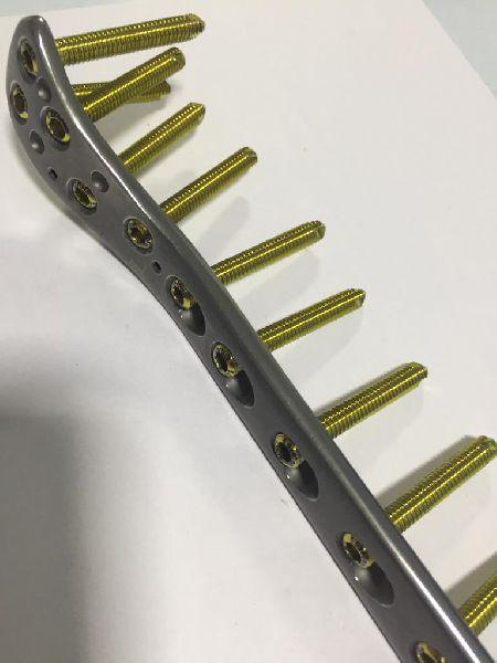 Large Fragment Locking Plates