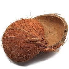 Raw Coconut Shells