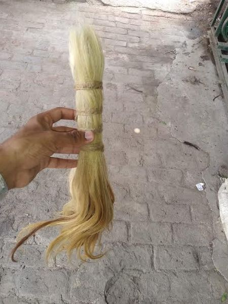 Horse Tail and Goat Hair