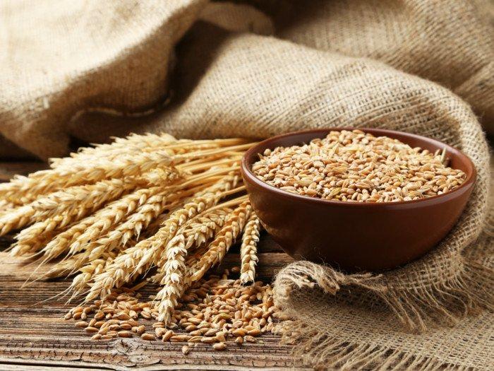 Human Feed Wheat