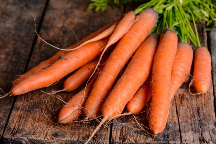 Ooty Carrot