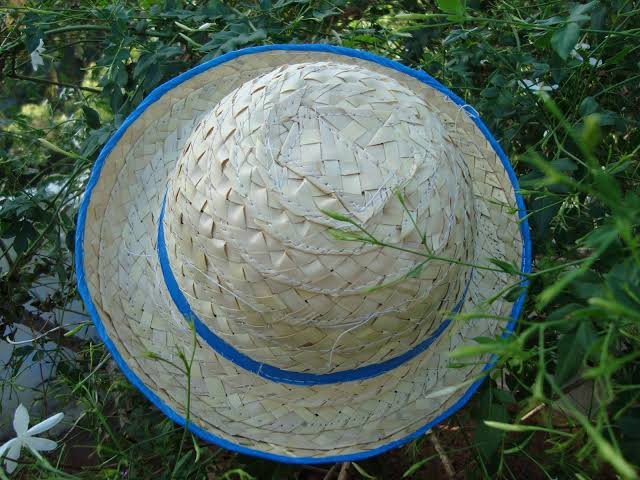Palm Leaf Hat