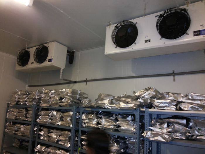 Cold Room Installation Services