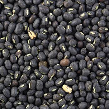 Black Urad Gram
