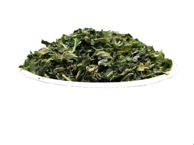 Freeze Dried Basil Levase