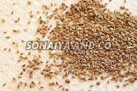 Raw Carom Seeds
