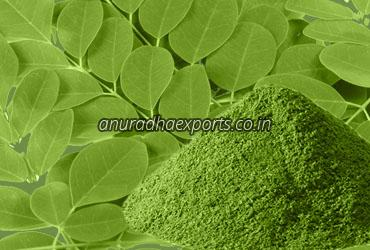 Pure Moringa Leaves Powder