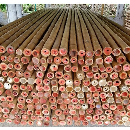 Construction Bamboo Poles