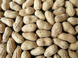 Brown Shelled Groundnuts