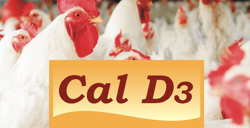 Cal D3 Animal Feed Supplement