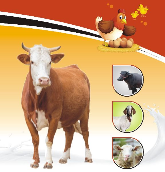 Cal Pro Animal Feed Supplement