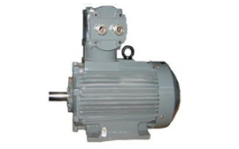 Flame Proof AC Motor