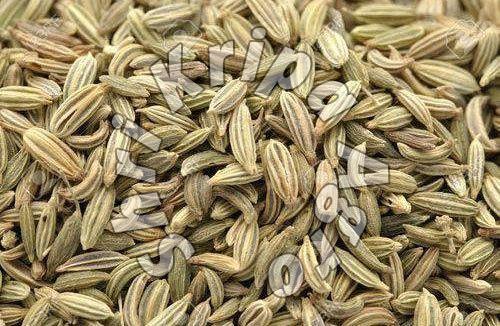 Raw Fennel Seeds