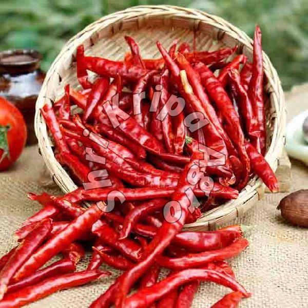 Sun Dried Red Chilli