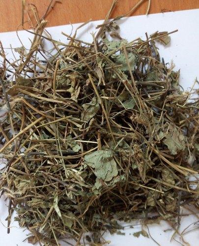 Dried Brahmi Leaves
