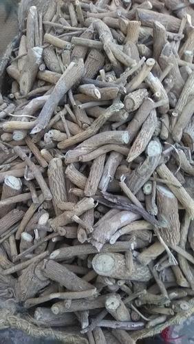 Jivanti Roots
