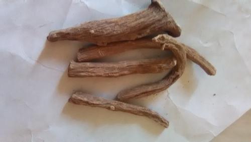 Pushkarmool Roots