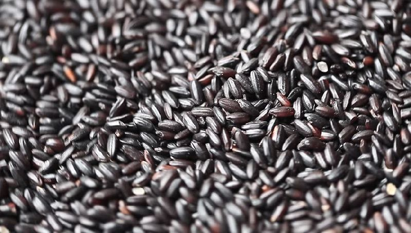 Black Non Basmati Rice