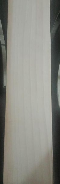 Kashmir Willow Cricket Bat Grade First