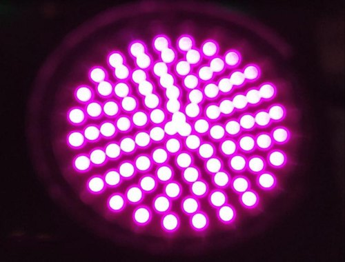 Purple LED Traffic Signal Lights