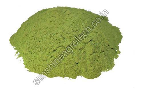 High Quality Stevia Leaves Powder