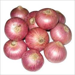30-50 MM Fresh Red Onion
