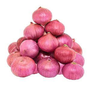 60-80 MM Fresh Red Onion